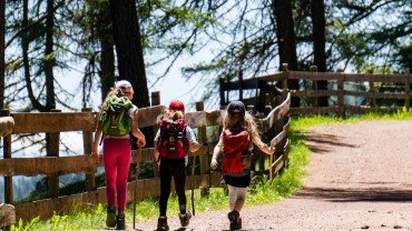 Hiking trails: Go for a family walk!